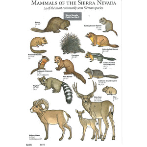 Mammals of the Sierra Nevada Field Card