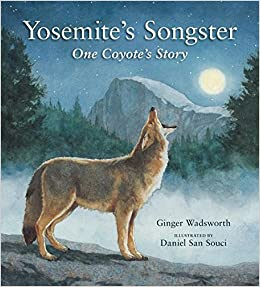 Yosemite's Songster
