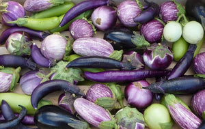 Italian & Asian Mixed Eggplant