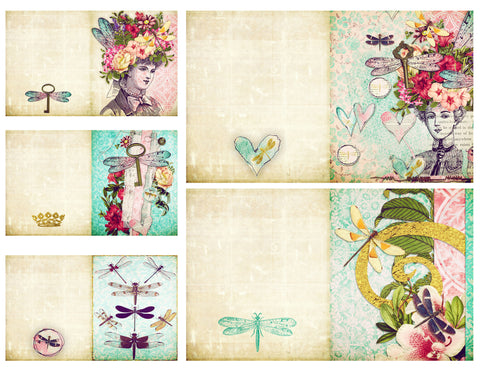 dragonfly delight folded cards