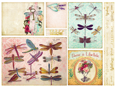 dragonfly delight panel cards floral card art