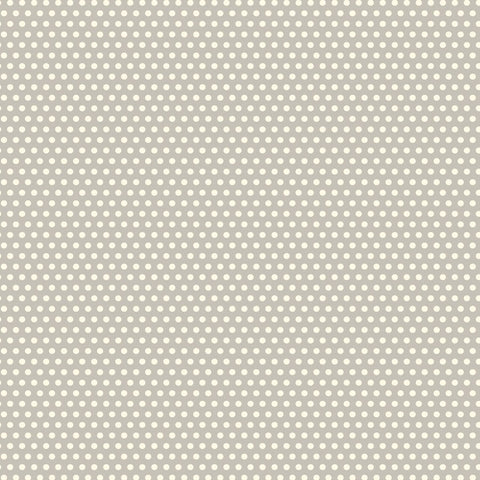 Grey & Ivory Mini Dot Rev Paper