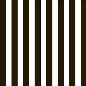 Black and White Big Stripe Paper