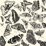 Spring Showers:  Butterflies on Ivory