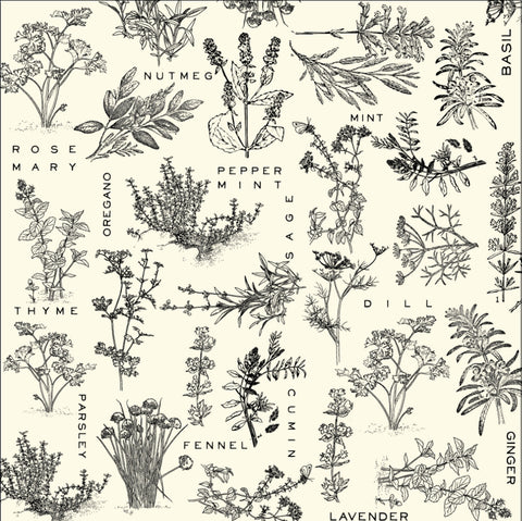 Herbs on Ivory Paper