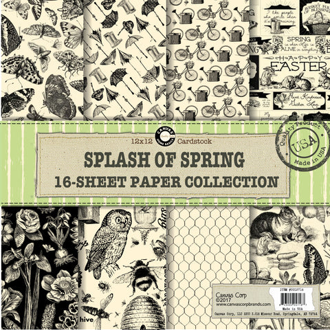 Canvas Corp Splash of Spring Paper Collection