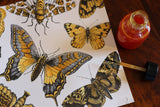Spring Showers:  Butterflies on Ivory Paper