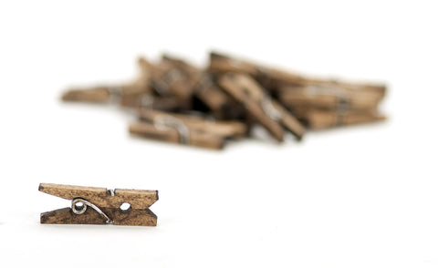 Mini Clothespins- Jacobean (25 pieces)
