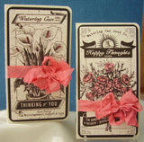 The Watering Can: Seed Packets on Ivory
