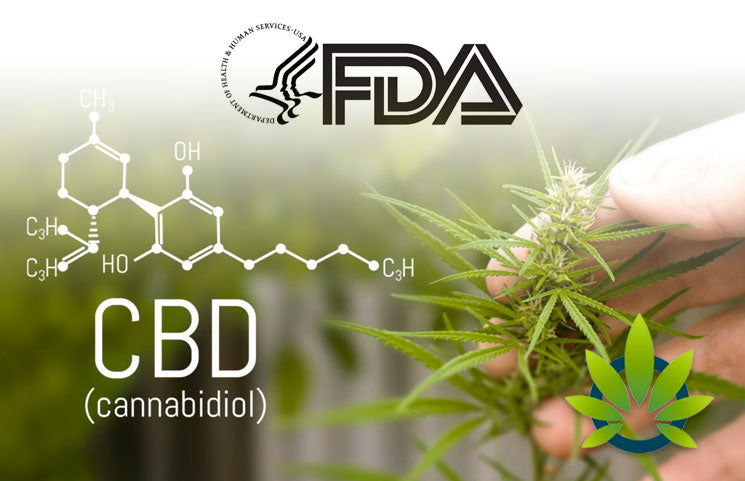 What's next for CBD? What experts say to expect from FDA review
