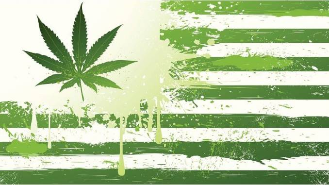 Which States Will Legalize Cannabis Next?