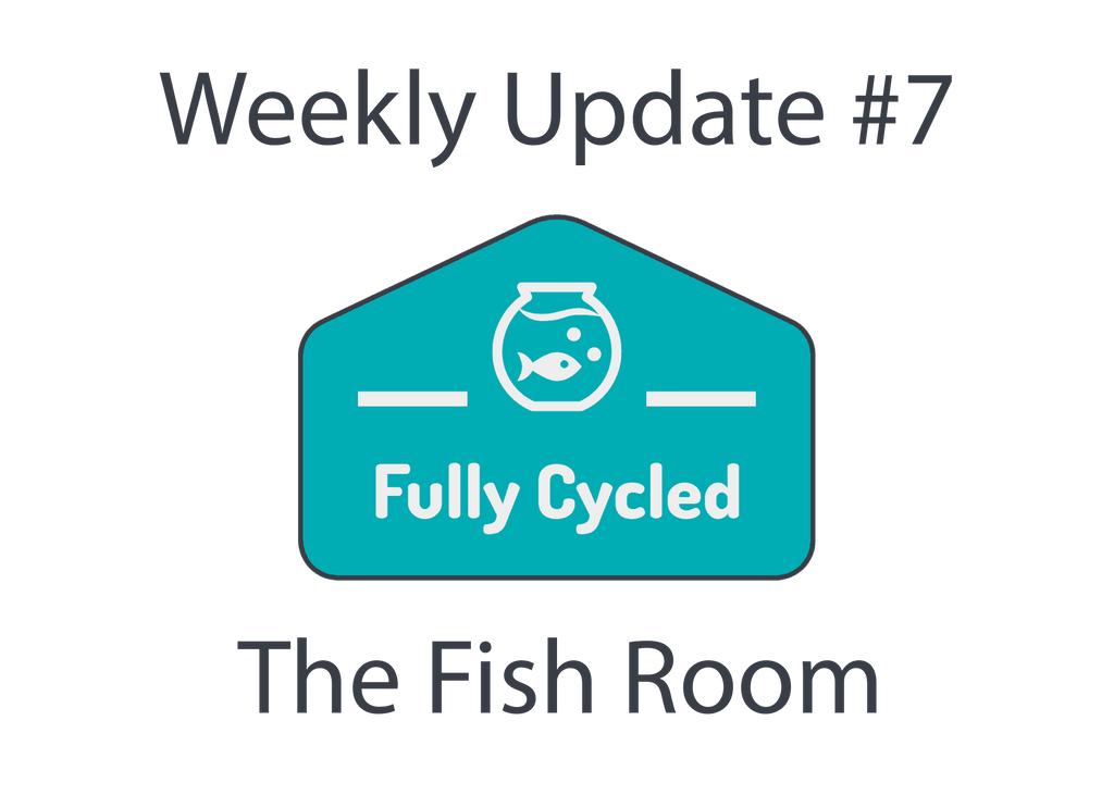 Weekly Update #7 - The Fish Room