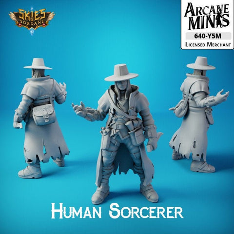 "Male Human Sorcerer - Carren Pirates €"" Skies Of Sordane"