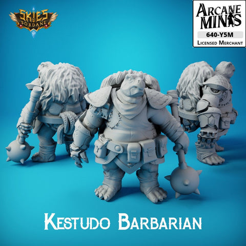 Kestudo Barbarian - Carren Pirates - Skies Of Sordane