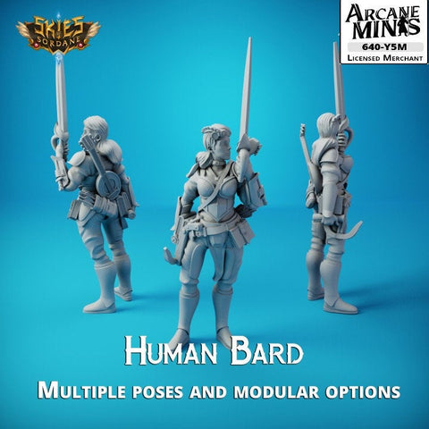 Human Bard - Merchant Guilds - Skies Of Sordane