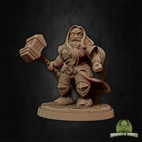 Malyan the Proud - Hold My Dwarf - Miniatures of Madness