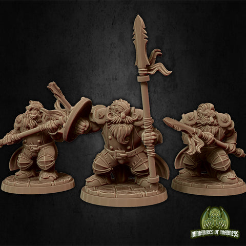 Dwarf Soldier Set 2 - Hold My Dwarf - Miniatures of Madness