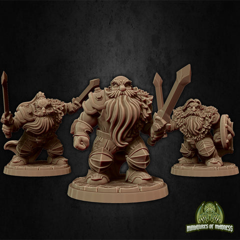 Dwarf Soldier Set 5 - Hold My Dwarf - Miniatures of Madness