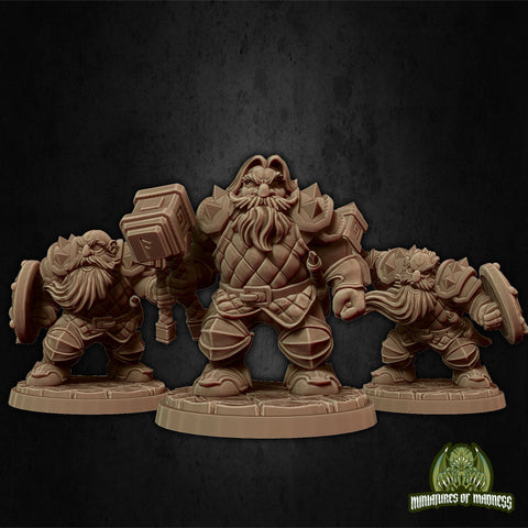 Dwarven Army - Hold My Dwarf - Miniatures of Madness