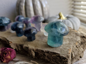 Natural Rainbow Fluorite Crystal Mushrooms