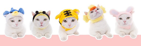 tiger hat for cat