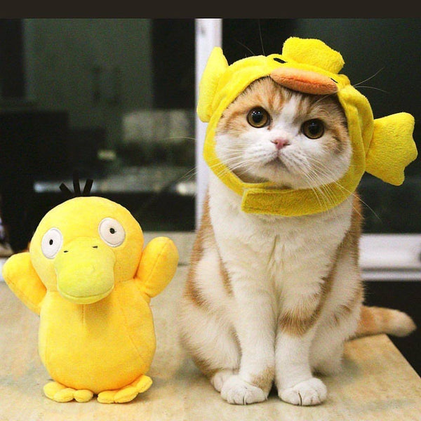 duck hat for cats