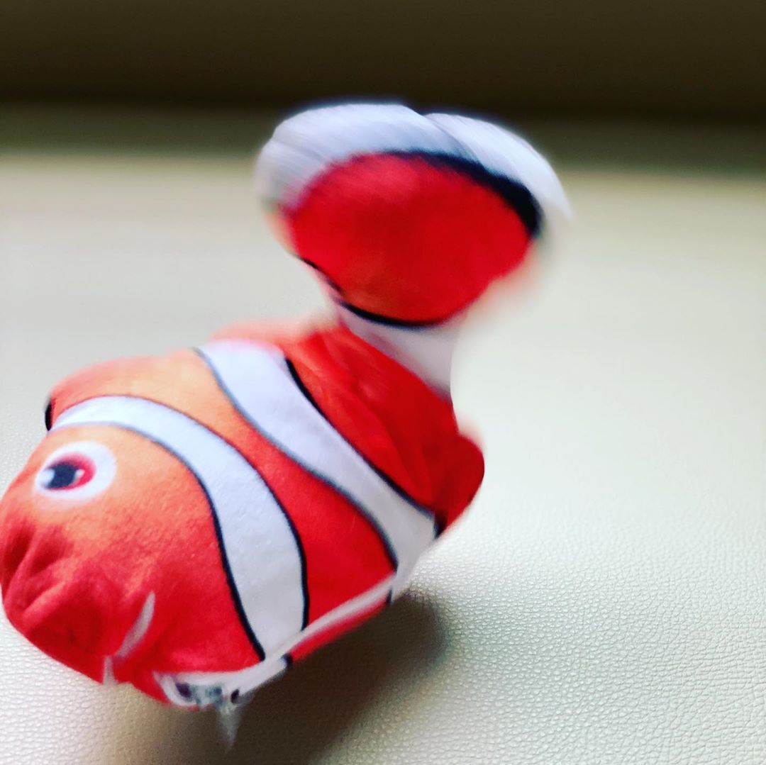 Dancing Fish Catnip Kicker Toy (Clownfish) - Petites Paws