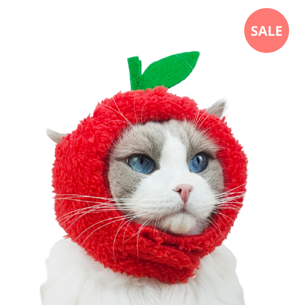 Apple Cat Costume - Petites Paws