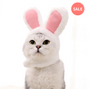 Bunny Cat Costume (White) - Petites Paws