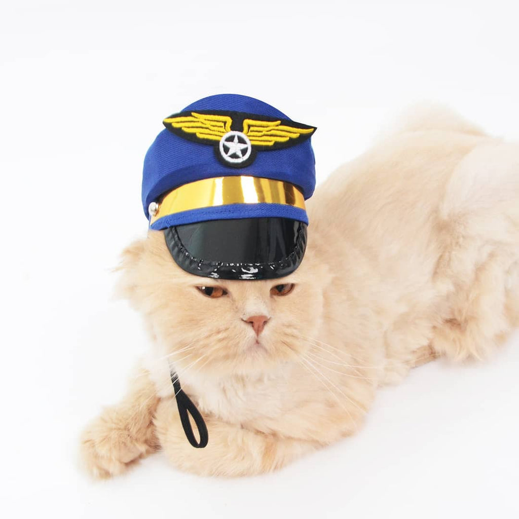 Air Force Cat Costume - Petites Paws