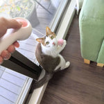 Retractable Cat Teaser Wand - Petites Paws