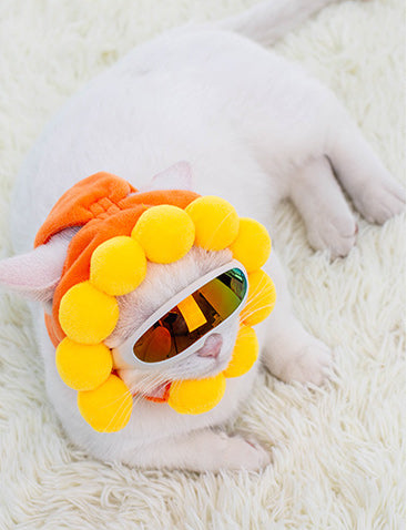Sunflower Cat Costume - Petites Paws