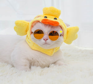Duck Cat Costume - Petites Paws