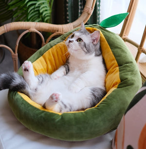 Avocado Cozy Pet Bed - Petites Paws