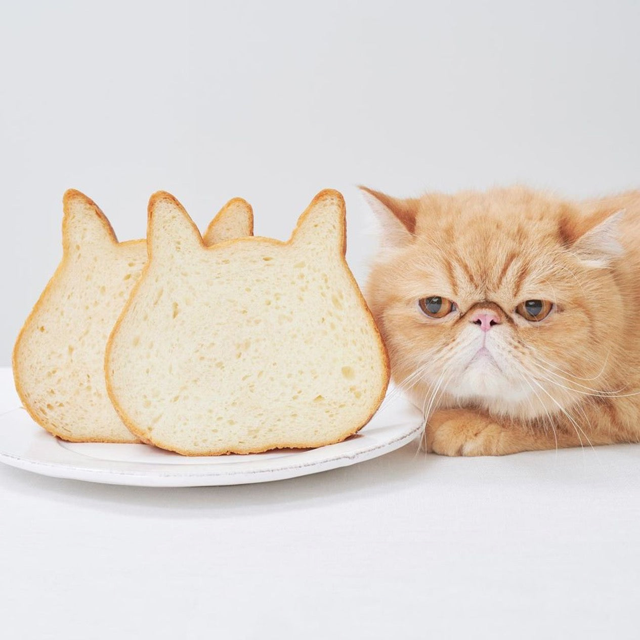 Cat Shaped Loaf Pan - Petites Paws