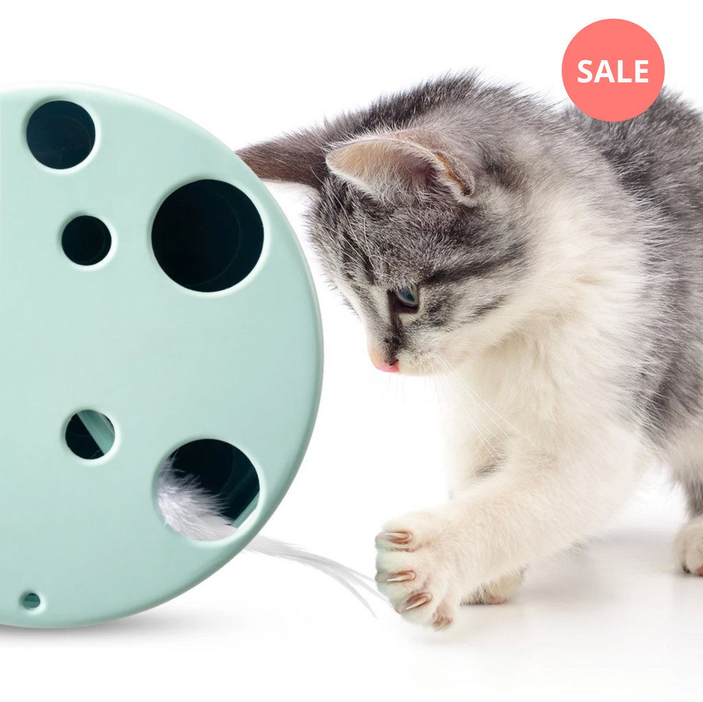 Rotating Feather Cat Toy