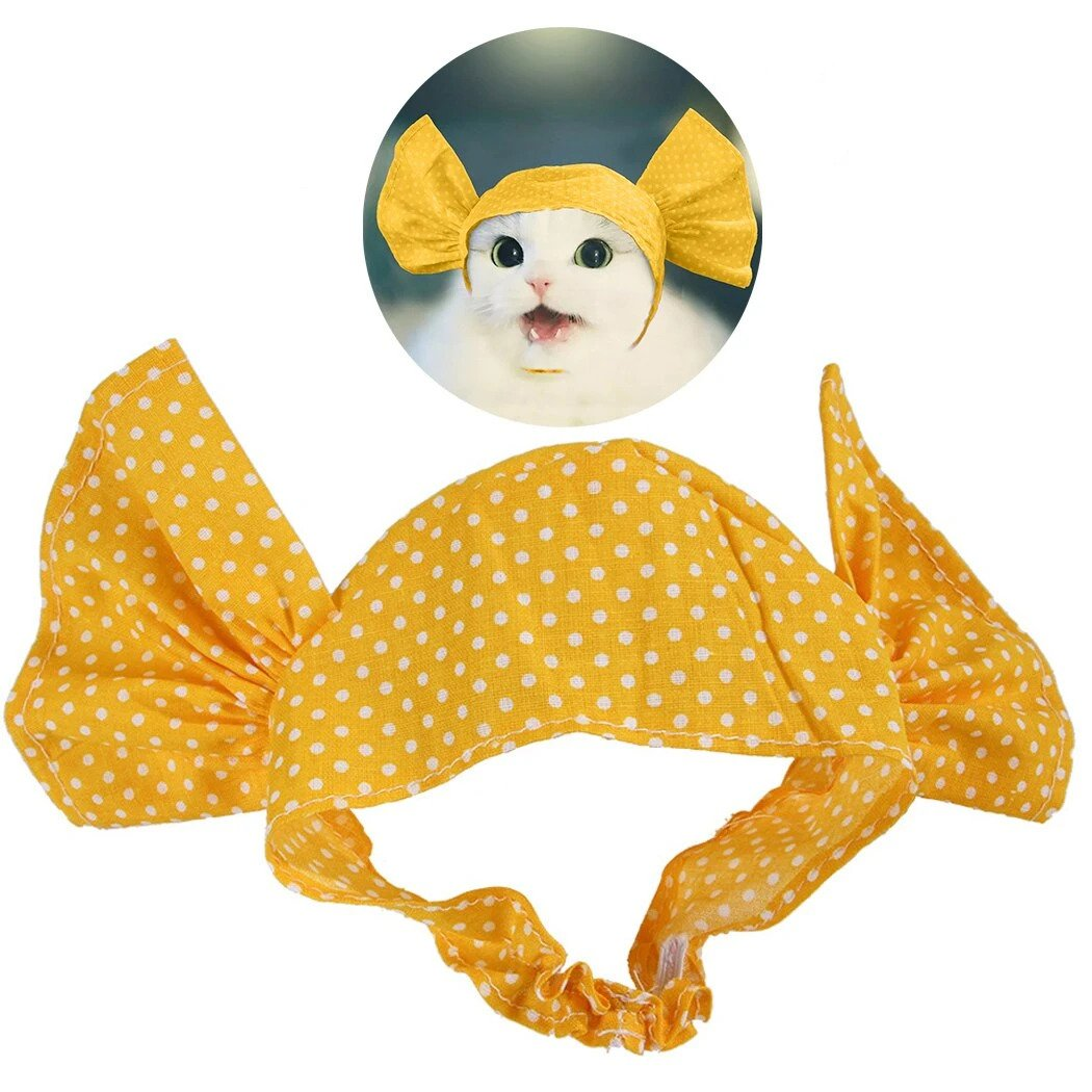 Sweet Candy Cat Costume - Petites Paws