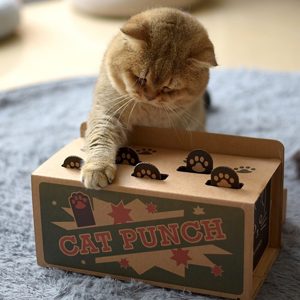 DIY Whack-A-Mole Cat Toy - Petites Paws