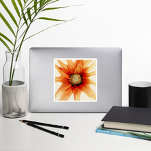 Load image into Gallery viewer, Bubble-free stickers:  Mandarin Orange