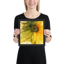 Load image into Gallery viewer, Framed poster:  September Sunflower