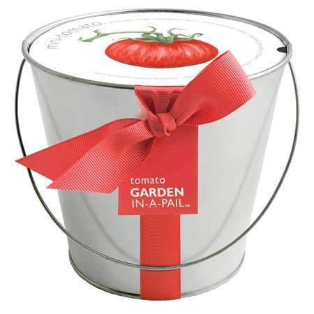 A garden in pail, tomato growing kit.