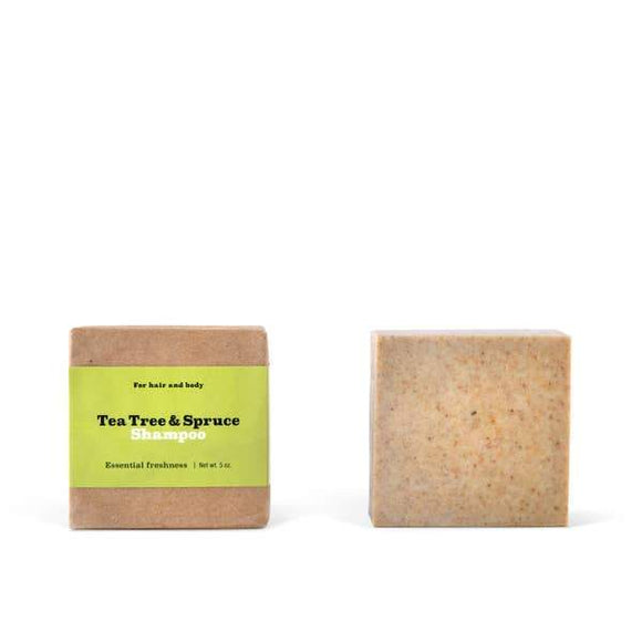 Two beige colored square tea tree and spruce shampoo bars.