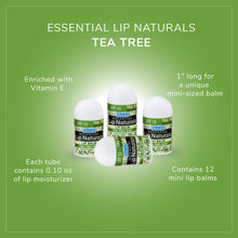 Load image into Gallery viewer, Essential Lip Naturals | Mini Lip Balm - 12 Count [SPF-15] (Tea Tree Mint)