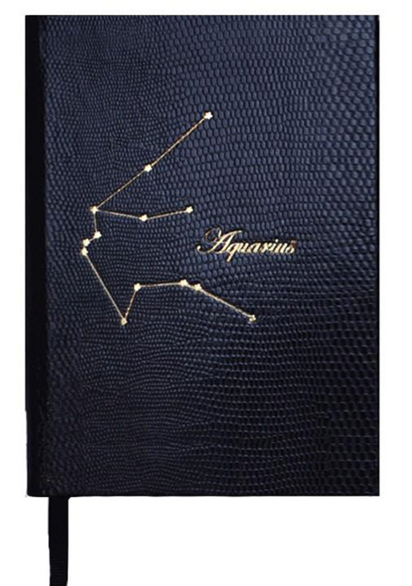 CONSTELLATION NOTEBOOK NO°23 - AQUARIUS