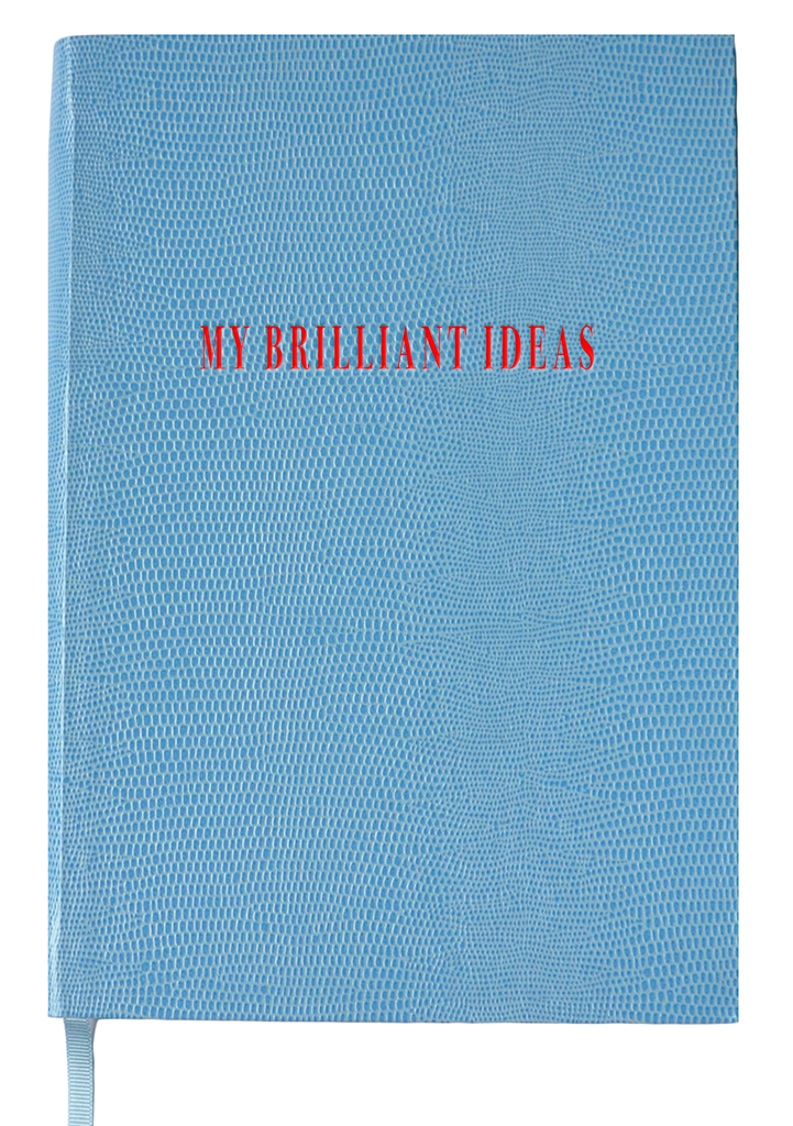 NOTEBOOK NO°4 - MY BRILLIANT IDEAS