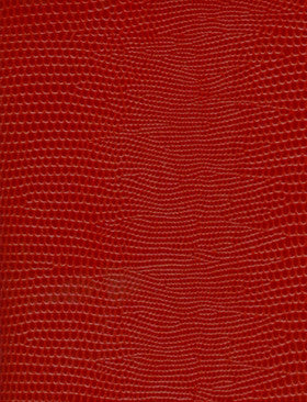 PHOTO ALBUM RED SMALL