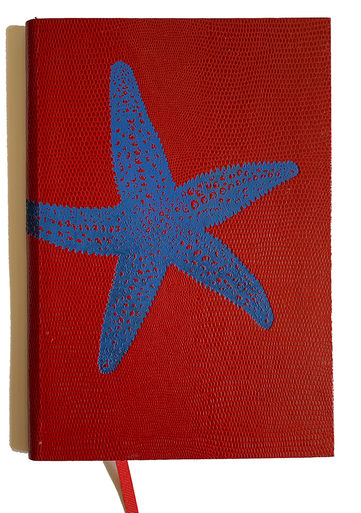 NOTEBOOK NO°79 - STARFISH