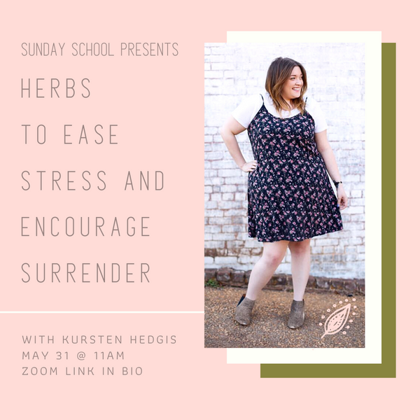 Sunday School at Modern Mystic Shop: Herbs to Ease Stress and Encourage Surrender | May 31