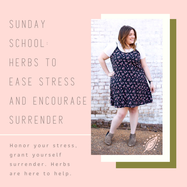 Herbs to Ease Stress | Sunday School Podcast