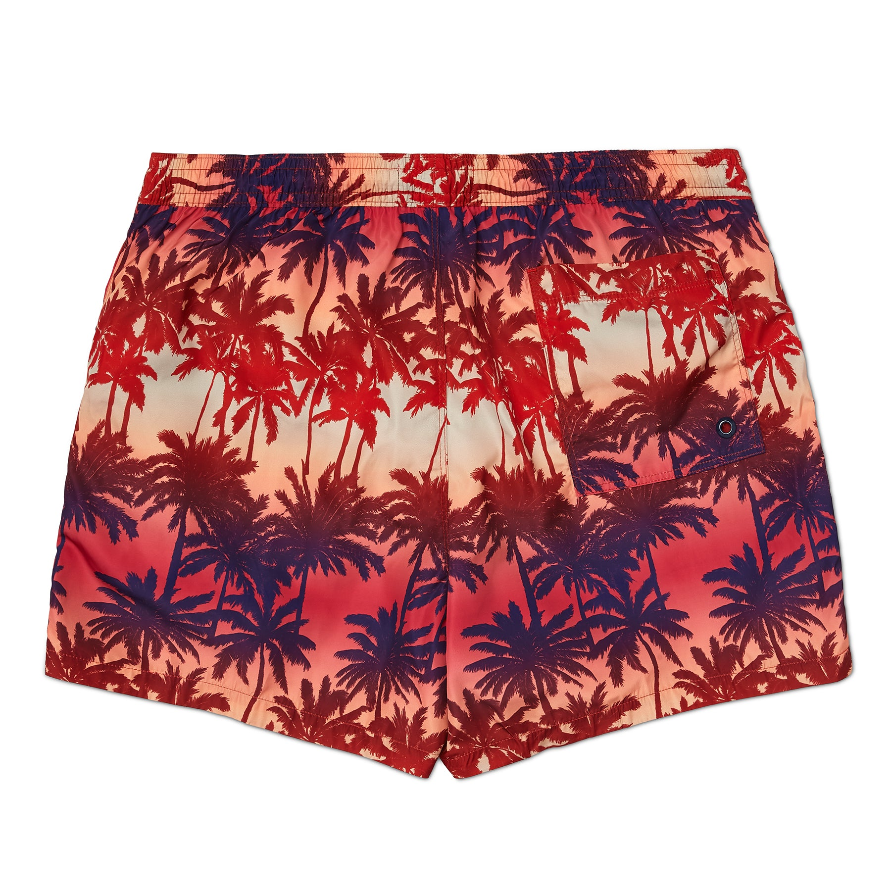 Sunset Palm Tree Print Swim Short, Regular Length